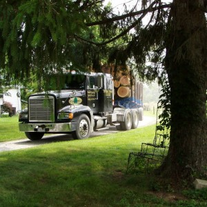 Tristate Truck, Loggers, Logging